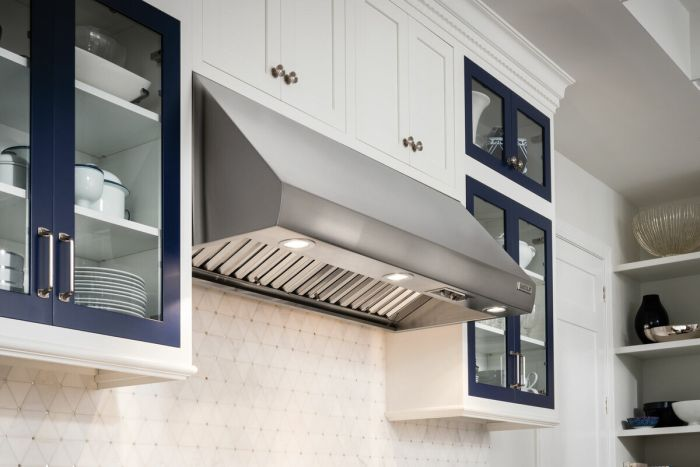 Wolf Wall Mounted Hood ICBPW482418 - Stainless Steel Image 1