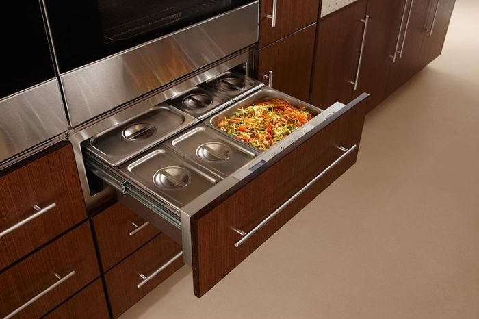 Wolf Warming Drawer ICBWWD30 - Fully Integrated Image 1