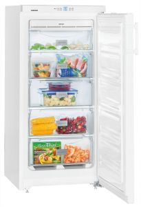 Liebherr Freestanding Upright Freezer Frost Free GNP1913 - White